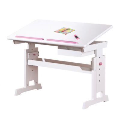 Baru dönthető lapos íróasztal (kék vagy rózsaszín)